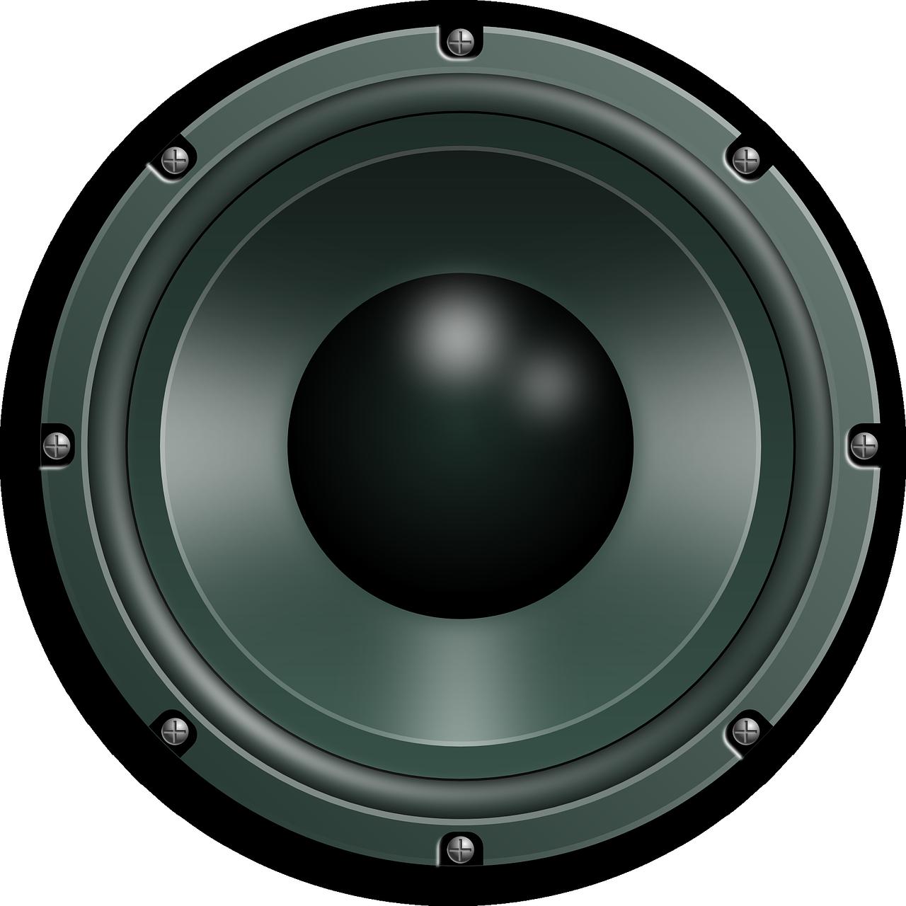 głośnik basowy
